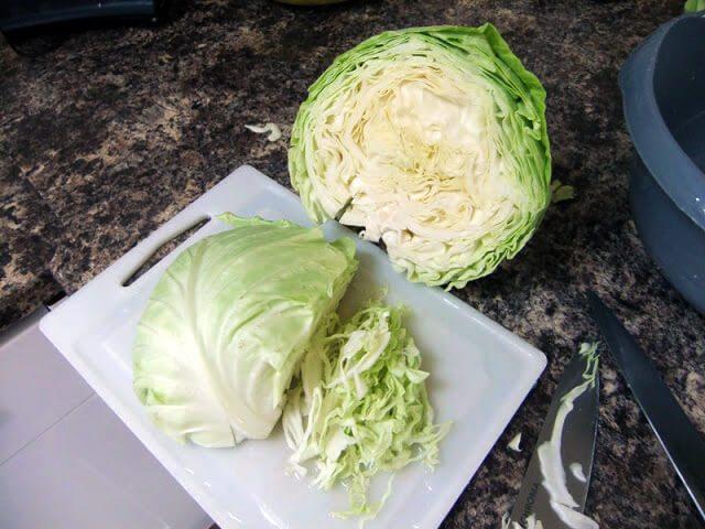 Shredded cabbage for making Sauerkraut