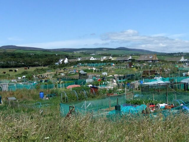 Port St Mary Allotment