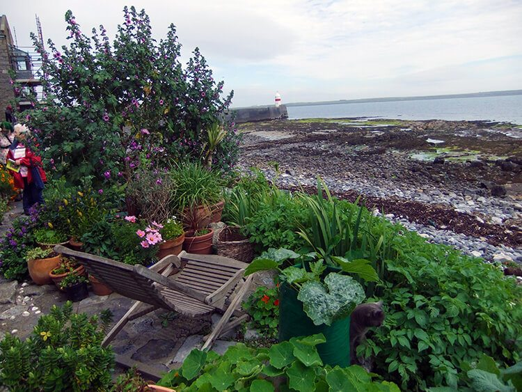 Beach garden - The Port St Mary Allotment and the Hidden Gardens of Castletown