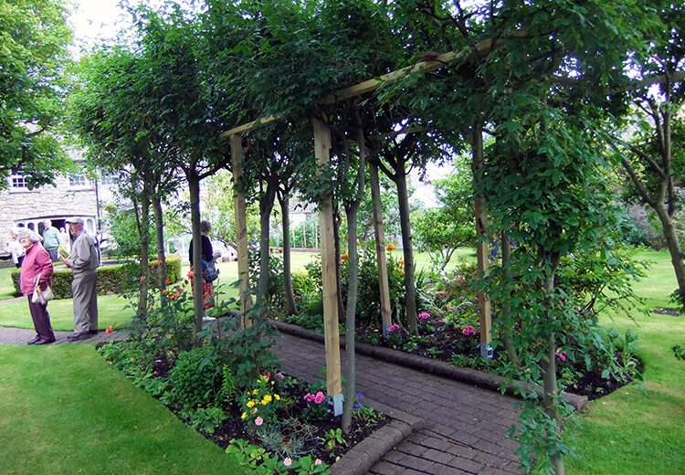 Pergola - The Port St Mary Allotment and the Hidden Gardens of Castletown