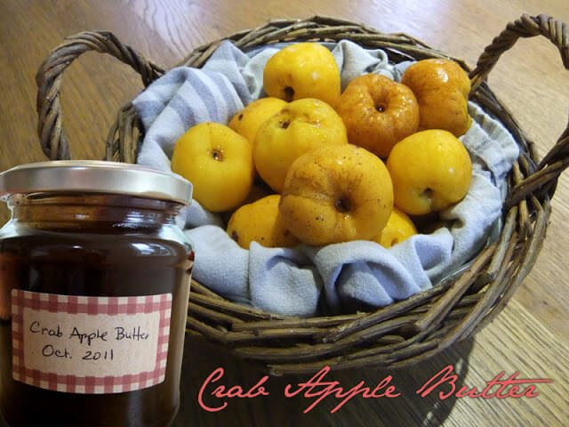 Spiced Crab Apple Butter Recipe