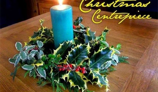 Use cuttings of holly and evergreens to create this inexpensive holiday candle center piece. If you have the greenery, all you'll need is a little florists wire to make this!