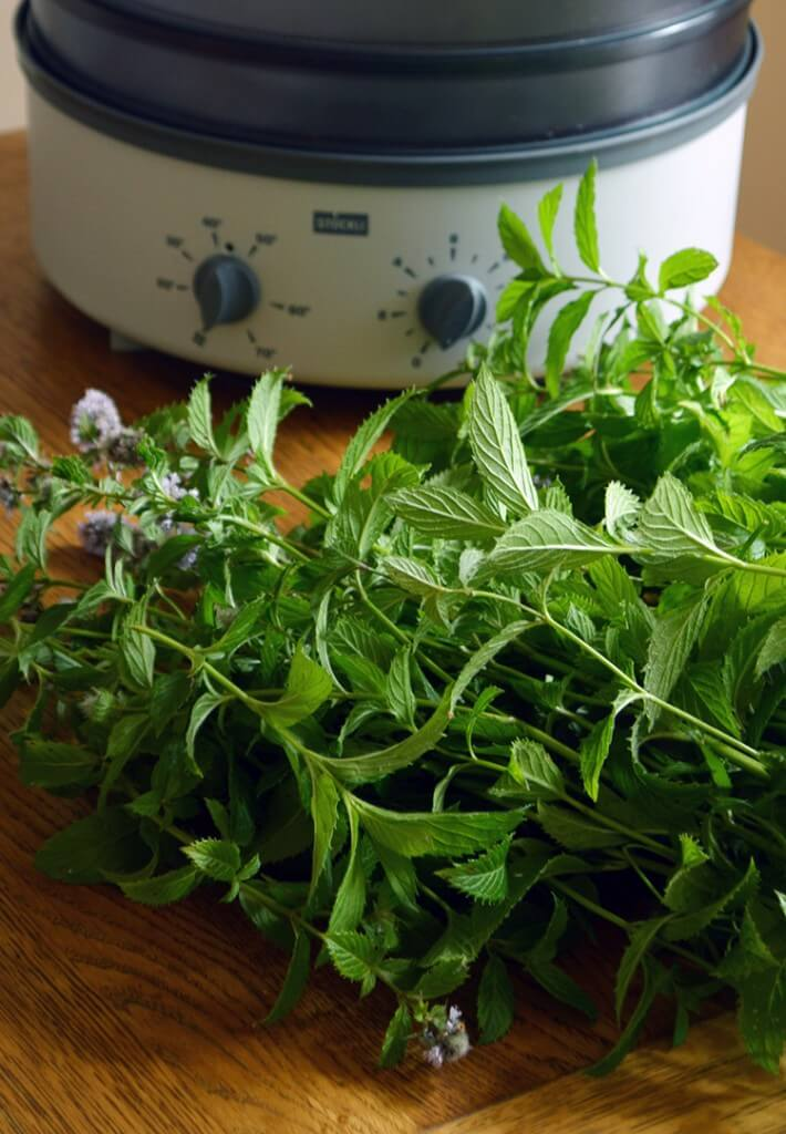 Two Ways to Dry Peppermint Leaves