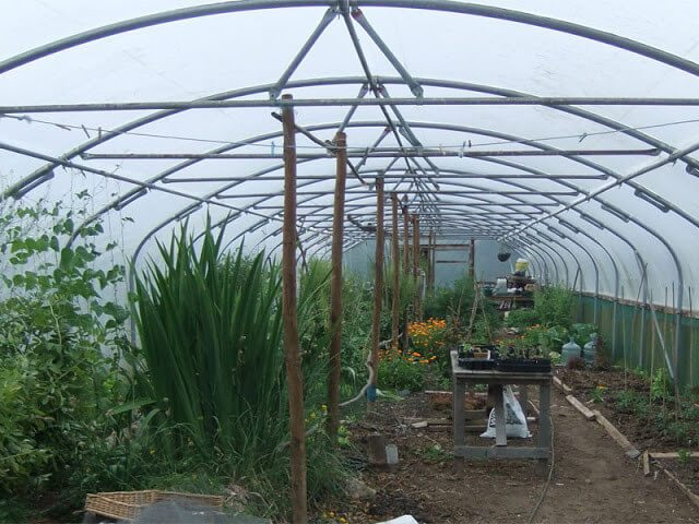 Get a head start on gardening with these ways to protect spring crops from the cold. Includes using cloches, row covers, cold frames, greenhouses, and hotbeds #gardeningtips #vegetablegarden #cropprotection #victorygarden