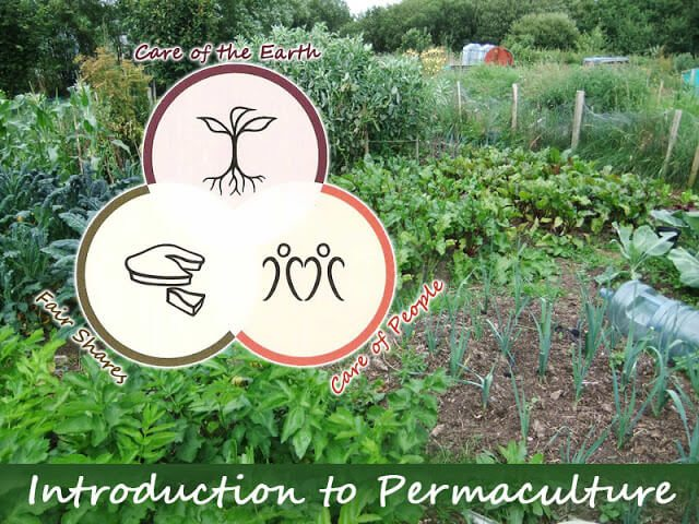 A Skeptic's Introduction to Permaculture