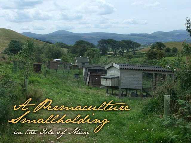 A Permaculture Farm on the Isle of Man