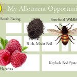 My Allotment Opportunities