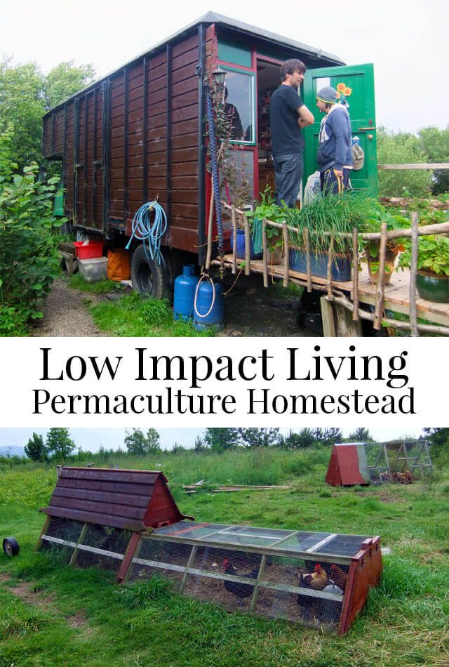 Low Impact Living on a Permaculture Homestead