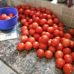 How to Bottle Tomatoes
