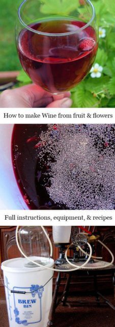 How to make Homemade Country Wine from berries, flowers, and fruit #lovelygreens #winemaking #brewing
