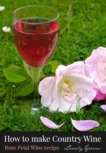 How to make Rose Petal Wine