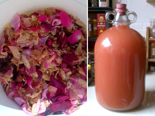 How to make fruit, flower, & vegetable wine