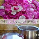 Making Wild Rose Water