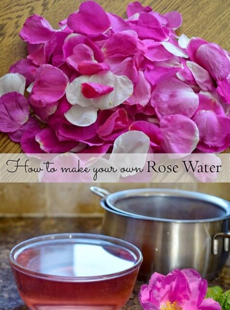 Use rose petals to make your own natural Rose Water
