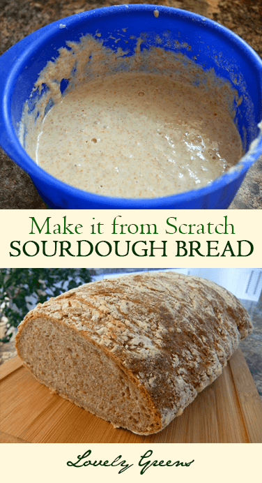 How to make sourdough bread and starter from scratch