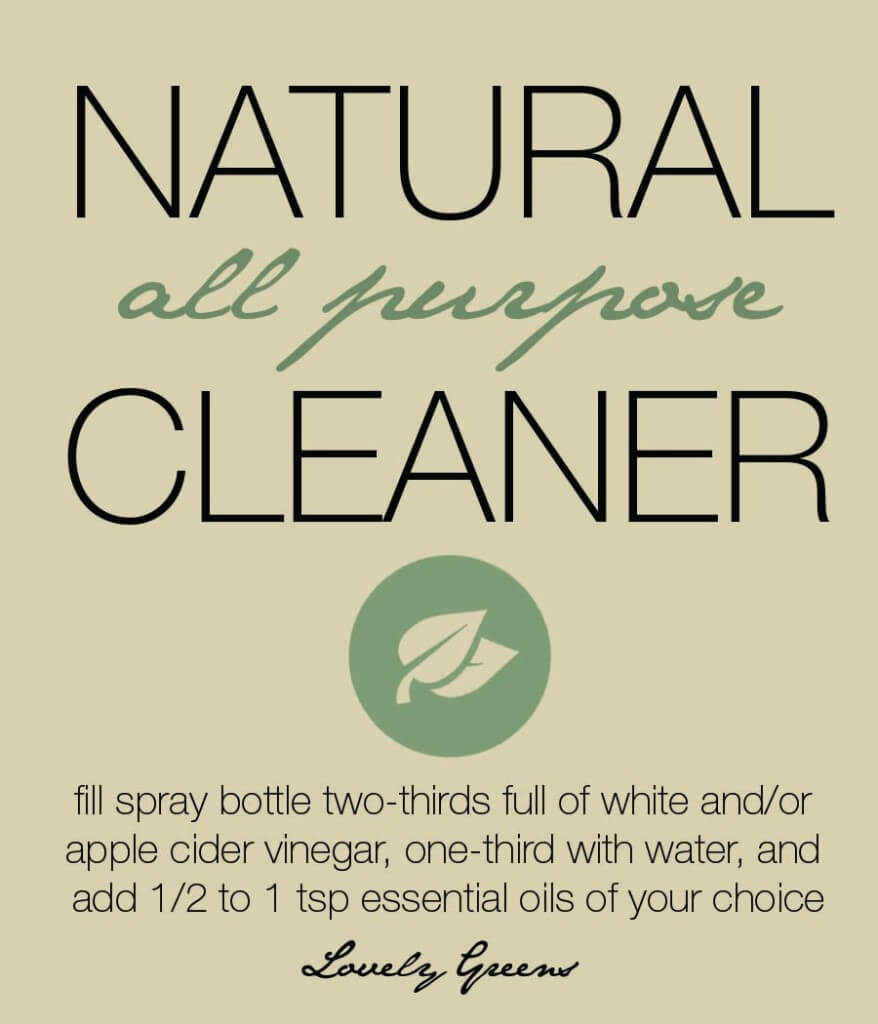 Earth-friendly DIY Kitchen Spray