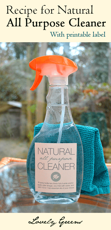 Earth-friendly DIY Kitchen Spray - simple ingredients and both easy and inexpensive to make