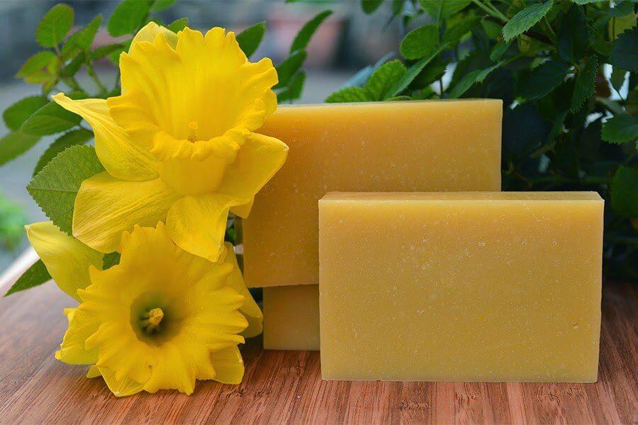 daffodil-soap1