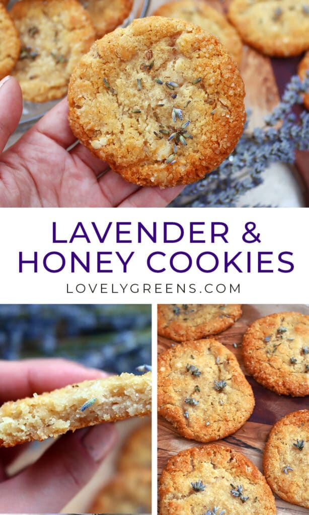 Sweet and chewy lavender cookie recipe with sweet honey, melted butter, & vanilla. A delicious edible flower treat perfect for summer parties #edibleflowers #lavendercookies #lavenderrecipe