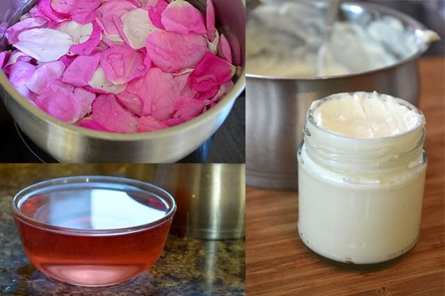 Growing a Beauty Products Garden: Plants, Flowers, & Herbs that are healing and beneficial for skin