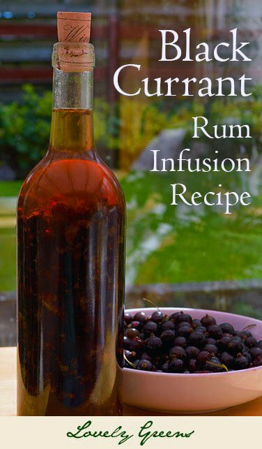 Blackcurrant Liqueur Recipe