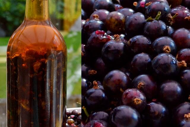 Blackcurrant Liqueur Recipe