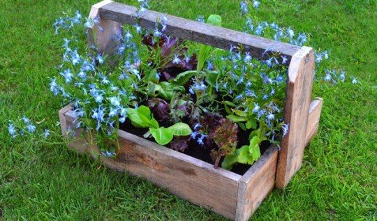 Pallet Project: use pallet wood to create simple trug-style planters
