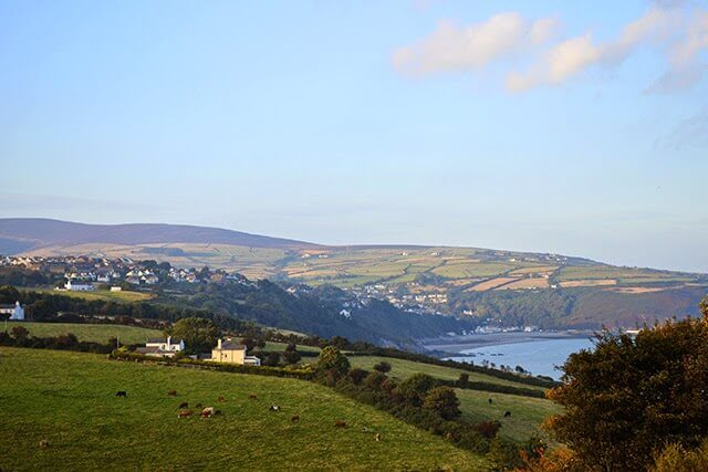 An Autumn Foraging Walk in the Isle of Man #wildfood #foraged #lovelygreens