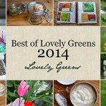 Lovely Greens Best of 2014