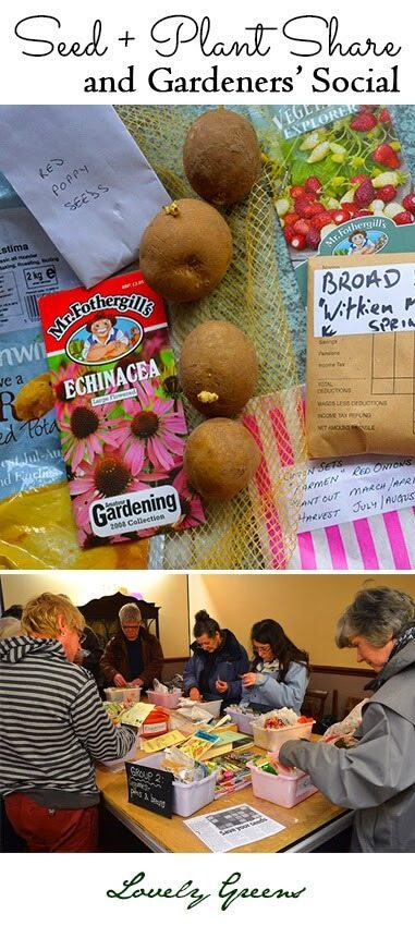 Seed + Plant Share and Gardeners' Social - the annual Seed Swap on the Isle of Man #gardening