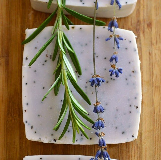 LAVENDER & ROSEMARY HAND SOAP RECIPE Make your own moisturizing and all-natural Lavender and Rosemary scrubby hand soap loaded with skin-loving oils. This soap will gently scrub up the grubbiest of hands but also leave them smooth and nourished #soap