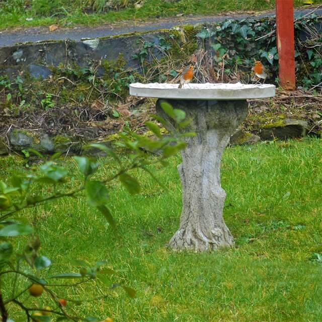 Instructions on how to make a DIY Mosaic Bird Feeding Table - an artistic project that's 'For the Birds'! #birds
