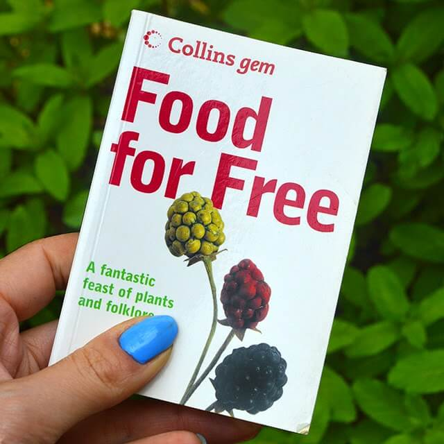 Food for Free, a pocket guide to identifying wild edibles #freefood