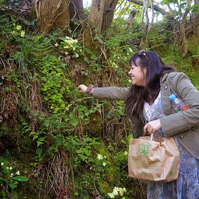 A beginner's walk to identifying wild edible plants such as sorrel, alexanders, wild strawberries, and Ramsons #wildfood