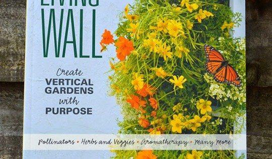 Grow a Living Wall by Shawna Coronado #garden