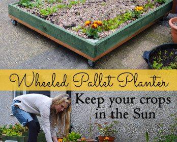 wheeled-planter