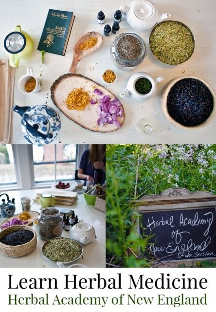 Become a herbalist by taking an accredited online course from the Herbal Academy