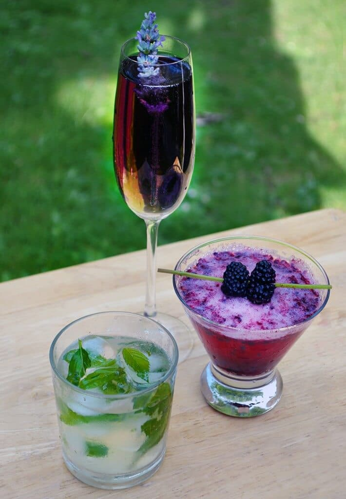 Late Summer Garden Party Drinks with Herbs and Flowers