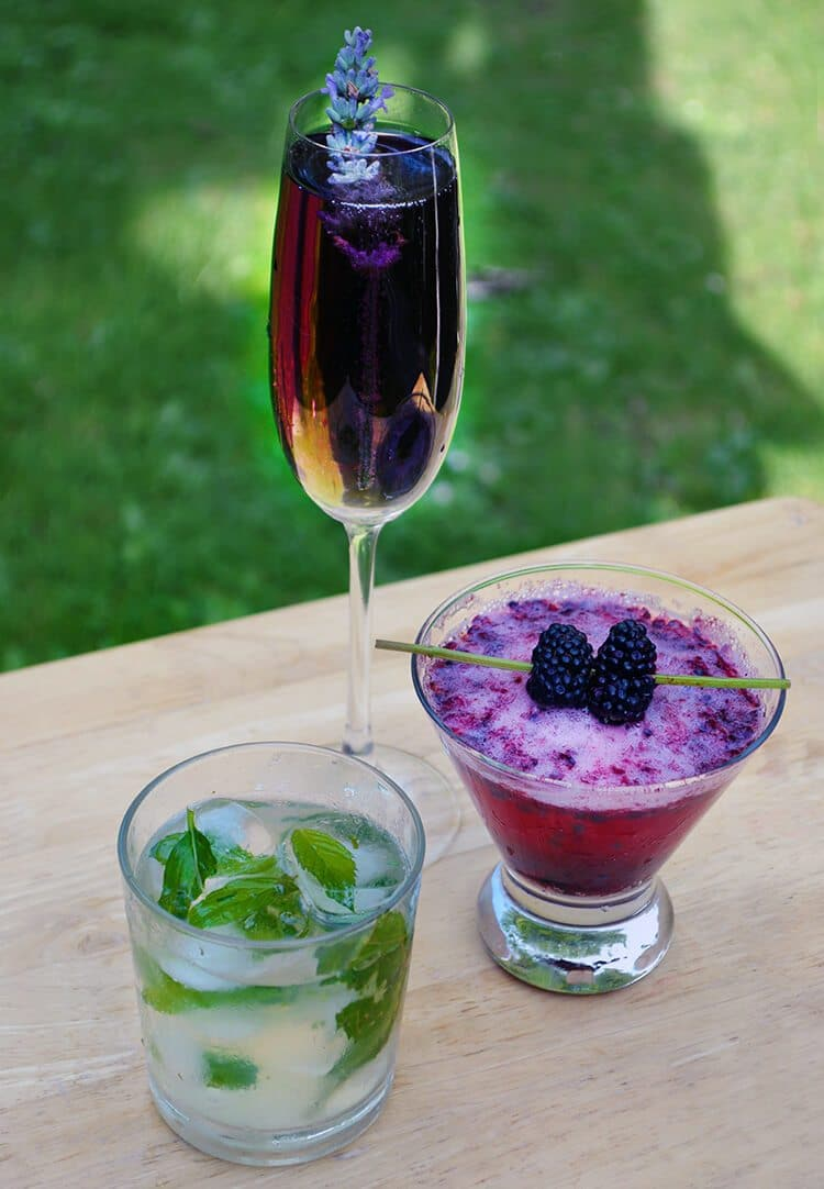 Late Summer Garden Party Drinks with Herbs and Flowers ...