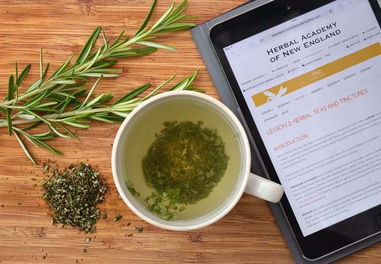Rosemary Herbal Infusion - a natural tea that helps improve memory and energy levels. This safe herbal medicine is made with directions from the Introductory course of the Herbal Academy of New England.
