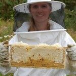 Beginners Beekeeping Class with the Isle of Man Beekeepers