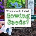 When should I start Sowing Seeds? - a guide to what seeds can be sown in January, February, and March