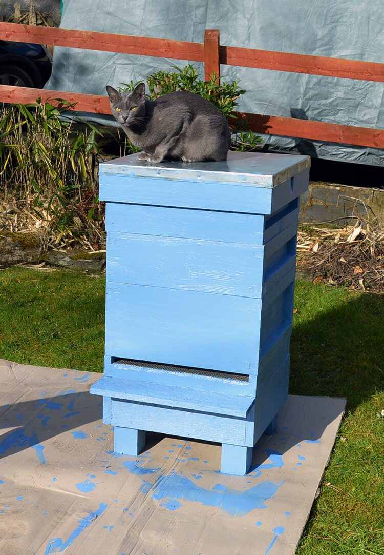 Painted Beehives: Introduction to my Periwinkle Blue Hive