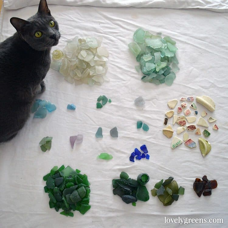 Sea Glass Foraging on the Isle of Man: Piles of brightly coloured sea glass, 19th century pottery, and Louis the cat