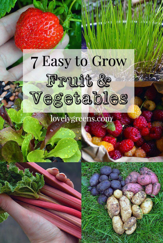 7 easy to grow fruits u0026 vegetables lovely greens garden living
