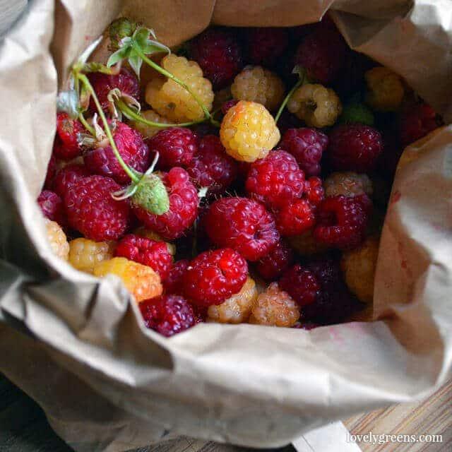7 Easy-to-grow Fruits & Vegetables: Raspberries
