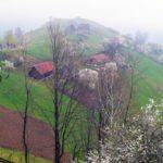 Fairy tale Farming in Eastern Europe