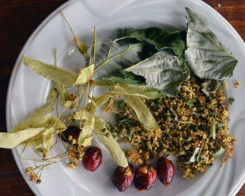 Wild flower & berry herbal tea- traditional Eastern European recipe