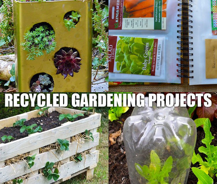 Recycled DIY Projects for the Garden
