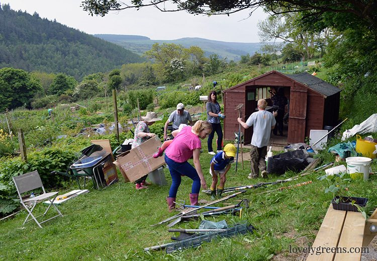 The Allotment Garden's Communal Shed and the annual tidy up